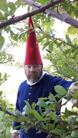 gnome-hat
